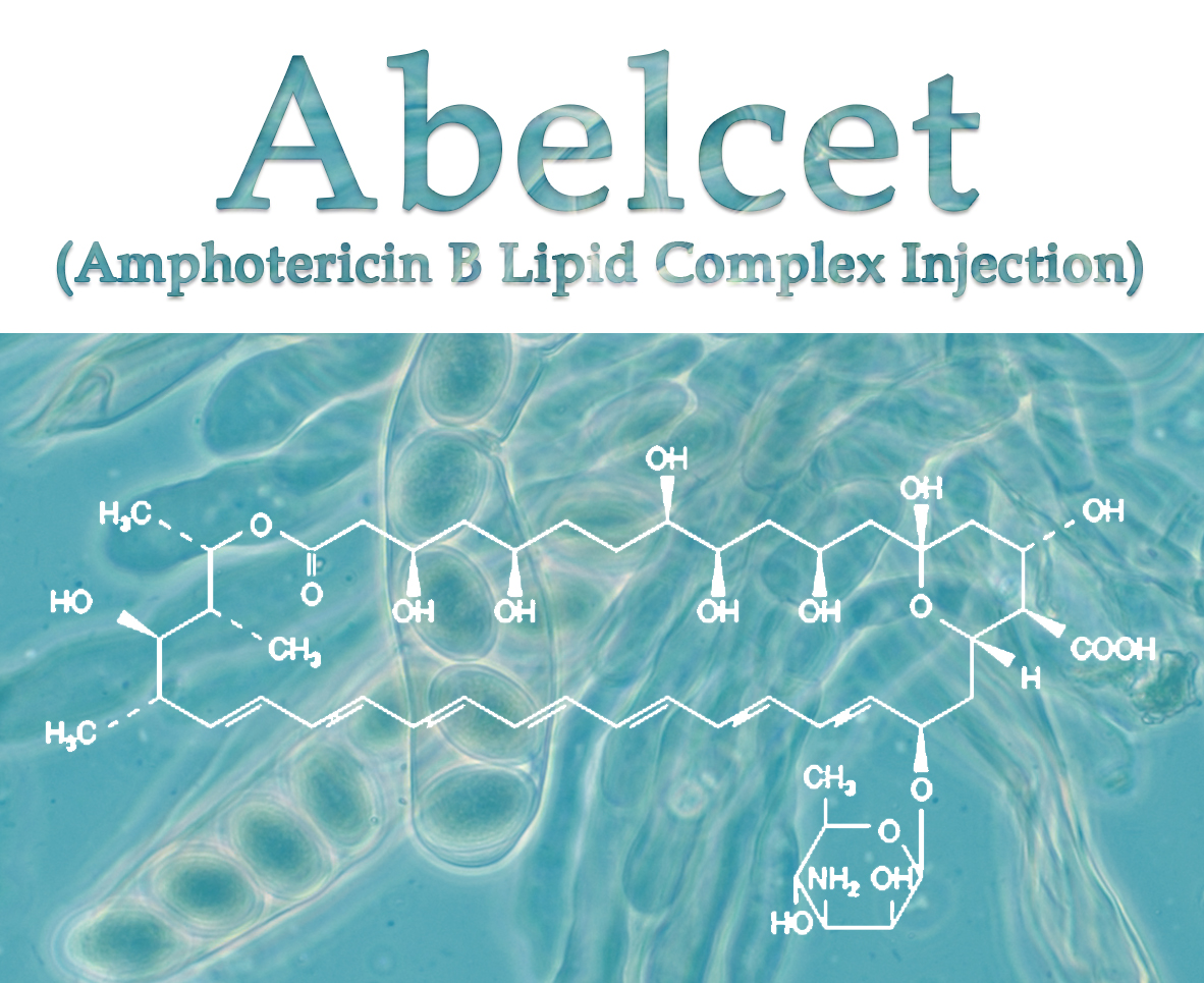 Abelcet (Amphotericin B Lipid Complex Injection) 100 mg