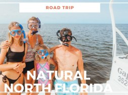 18 Fantastic To Do In North Florida (escape the typical crowds)