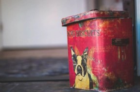 Pic-3-a-vintage-dog-food-storage-container-1024×683