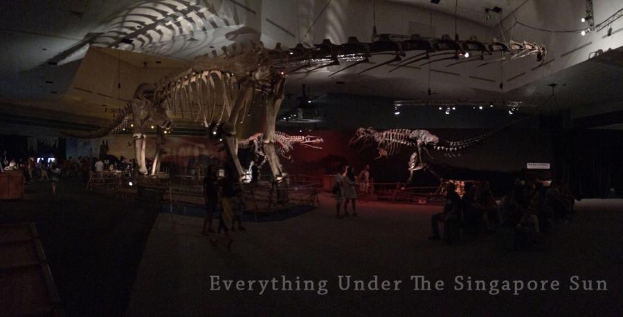 dinosaurs-science-center- (13)