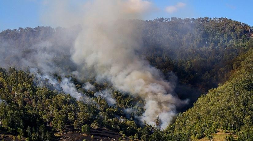 Bushfire-landscape.jpg