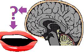 Brain Mouth