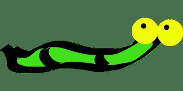 worm-34968_1280