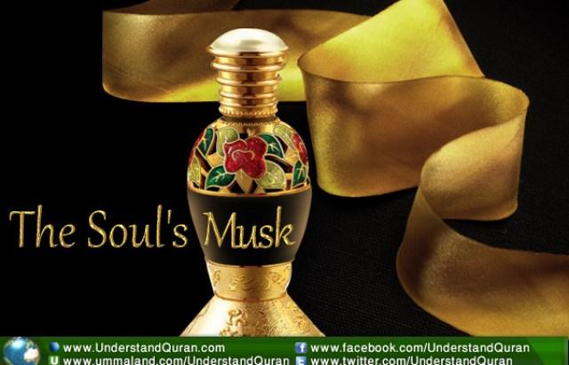 understand-quran-soul-musk