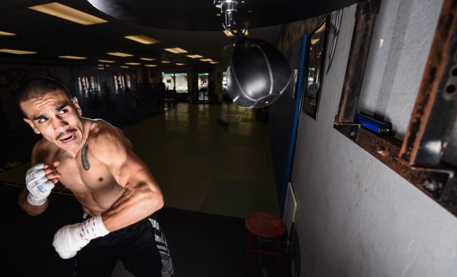 Under the Hand Wraps: Andy Vences