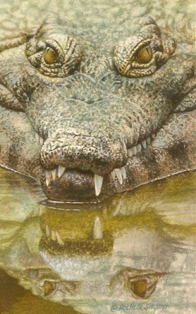 uncomfortably-menacing-crocodile-painting-by-rachelle-siegrist