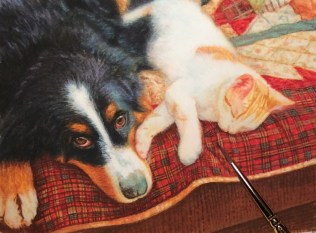 dog-painting-cat-painting-commission-by-rachelle-siegrist5