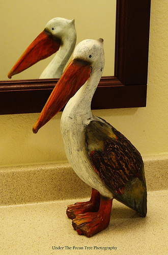 Mr. Pelican is the resident of our refurbished bathroom.