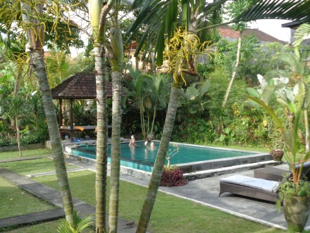 Alit Bungalows our place in Ubud