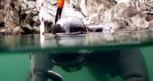Lysekil1 - 2010 - et år under vandet
