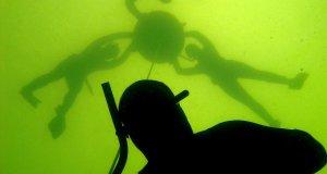 Undervandsitetets fridykkerkurser i Furesøen