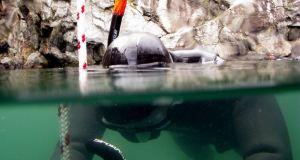 Ignite 12 - Nordic Deep 2011 - DM i fridykning