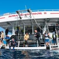 Live-aboards: Kona Aggressor II