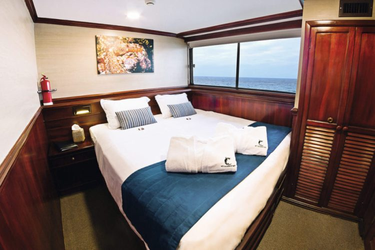 Galapagos Sky Master Cabin with king bed. Photo courtesy of DivEncounters