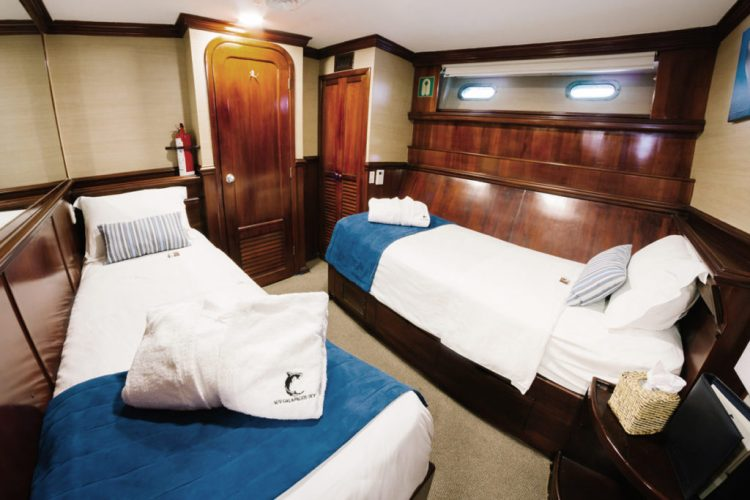 Deluxe Cabins are trimmed in rich woodwork, and offer twin beds and a private en suite bathroom. Photo courtesy of DivEncounters