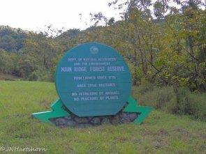 Tobago Main Ridge
