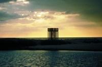 Imma Jansana. Mirador en las marismas del Delta del Llobregat