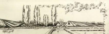 Elsa Leviseur, UC Davis Arboretum