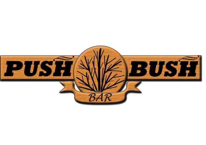 PUSH BUSH PAGR