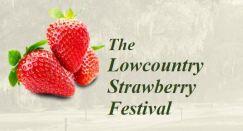 strawberry-festival