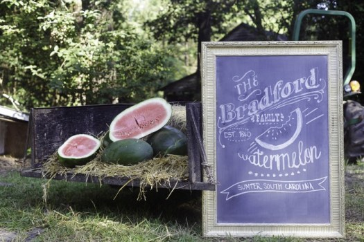 Bradford Watermelons:::...