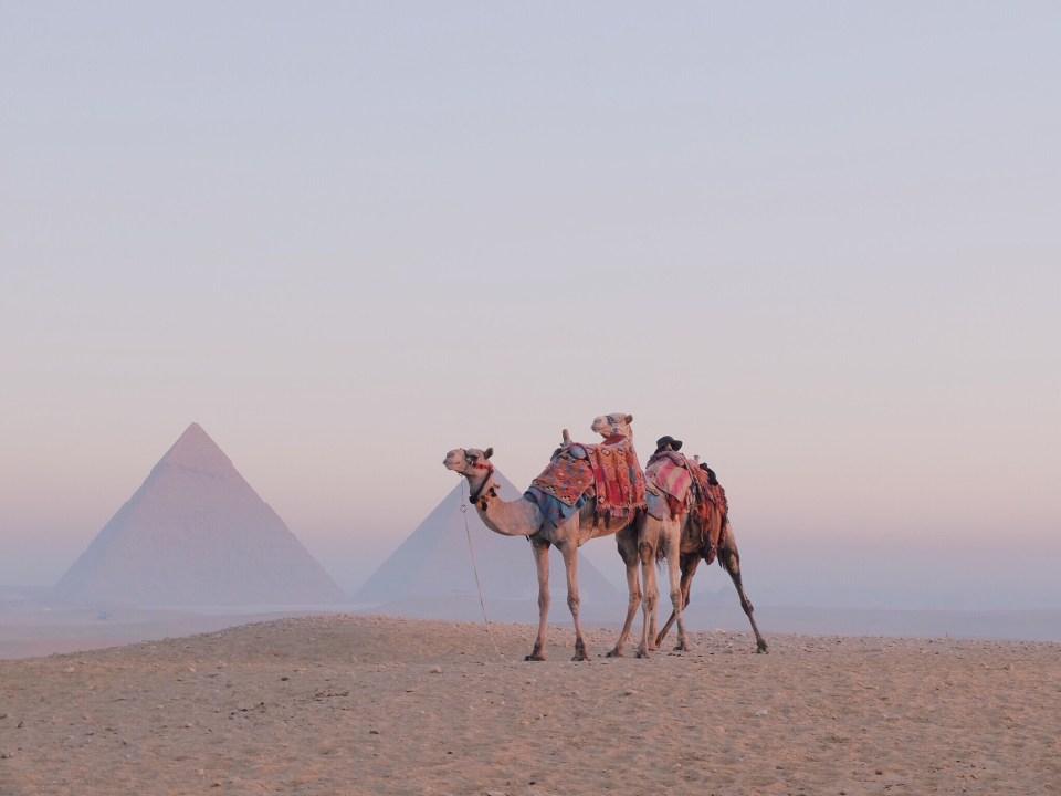 Egypte, Le Caire 7