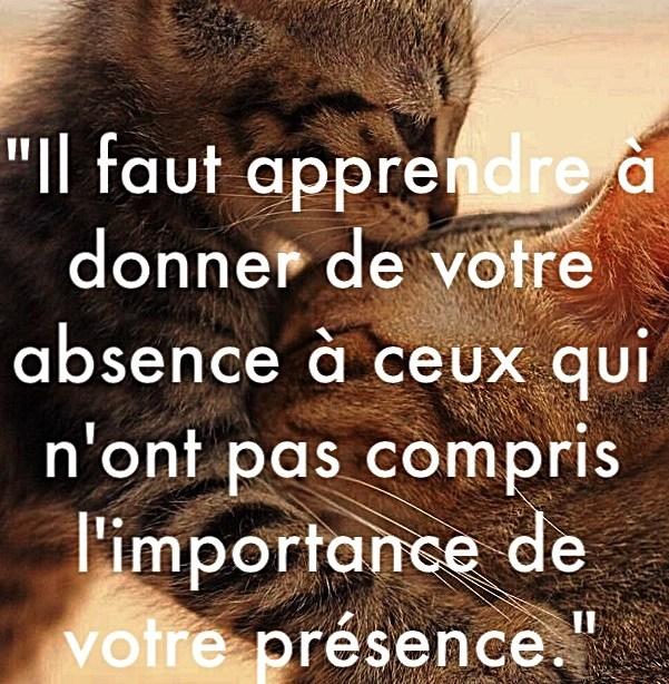 « Il faut apprendre à donner de votre absence à ceux qui n'ont pas compris l'importance de votre présence. »
