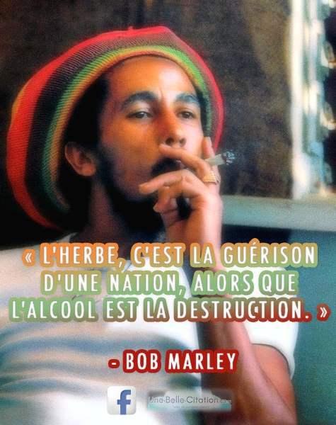 l-herbe-c-est-la-guerison-d-une-nation-alors-que-l-alcool-est-la-destruction-bob-marley