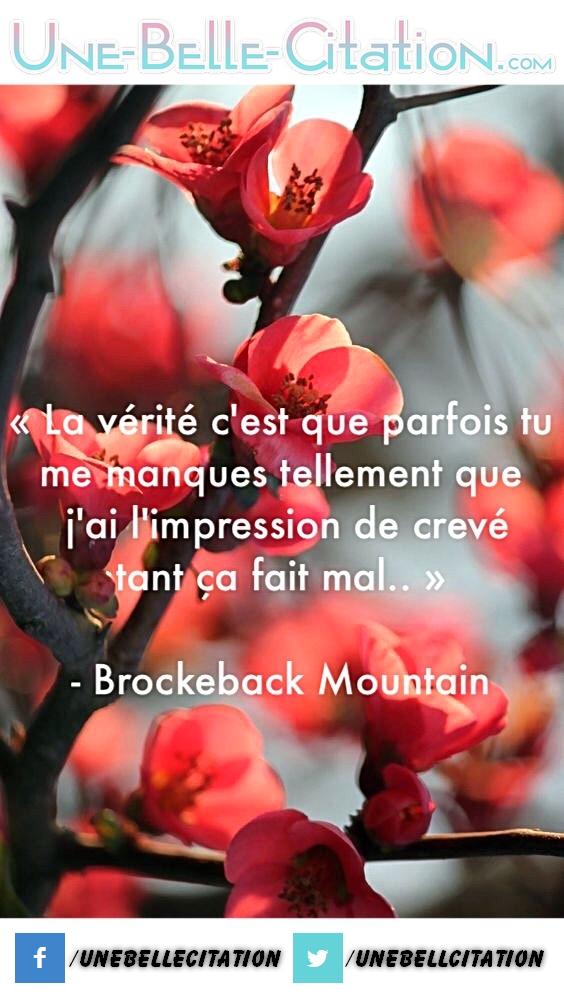 « La vérité c'est que parfois tu me manques tellement que j'ai l'impression de crever tant ça fais mal. » – Brockeback Mountain