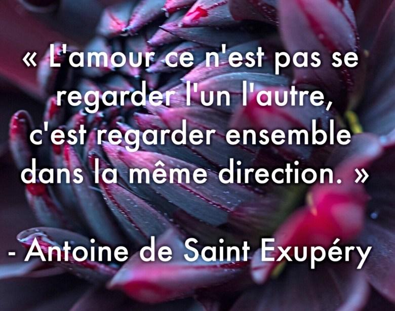 « L'amour ce n'est pas se regarder l'un l'autre, c'est regarder ensemble dans la même direction. » – Antoine de Saint-Exupéry