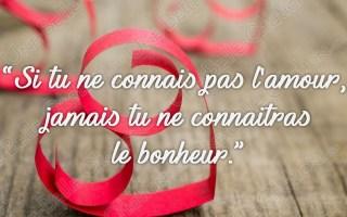 « Si tu ne connais pas l'amour, jamais tu ne connaîtras le bonheur. »