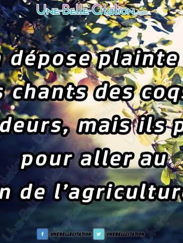 « Ça dépose plainte pour les chants des coqs et les odeurs, mais ils payent pour aller au salon de l'agriculture »