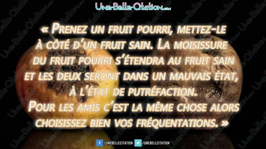 « Prenez un fruit pourri, mettez-le à côté d'un fruit sain. La moisissure du fruit pourri s'etendra au fruit sain et les deux seront dans un mauvais état, à l'état de putréfaction. Pour les amis c'est la même chose alors choisissez bien vos fréquentations. »