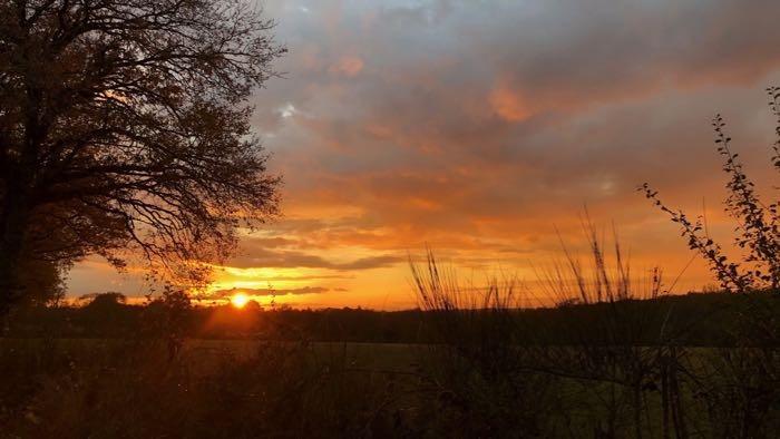 coucher de soleil orangé sur la campagne