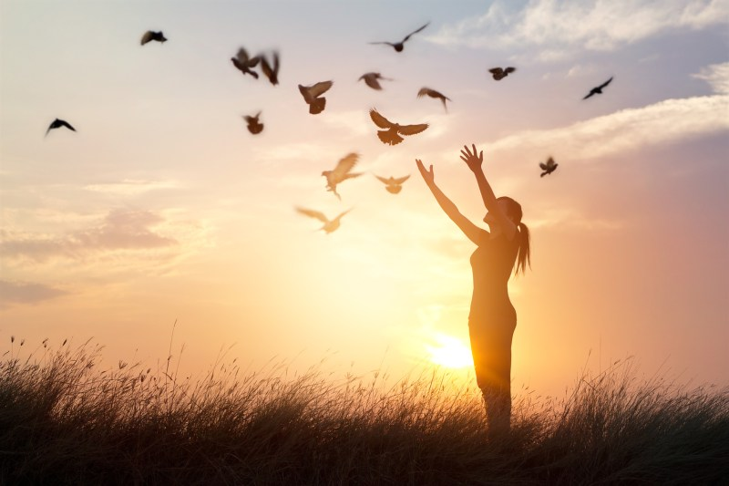 Eveil conscience paix centième sing phénomène