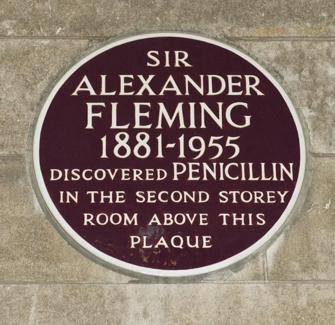 penicillin photo