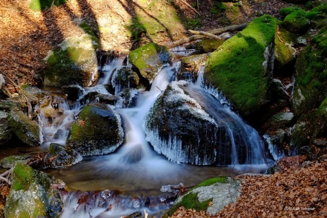 parc naturel régional photo