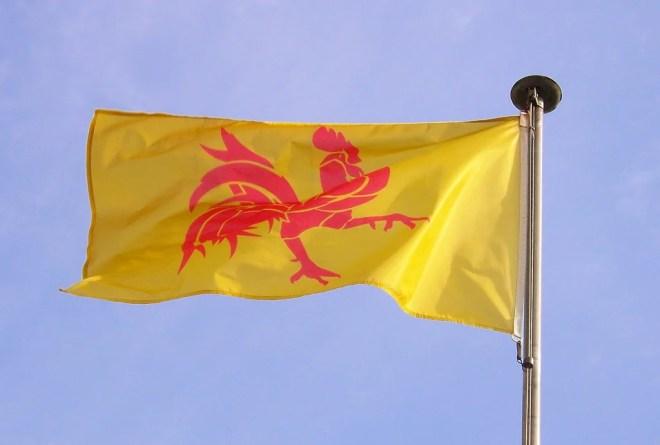 drapeau wallonie photo