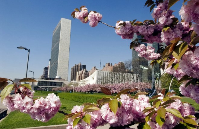 united nations headquarters photo