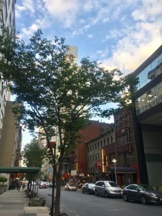 Uper East Side (8)