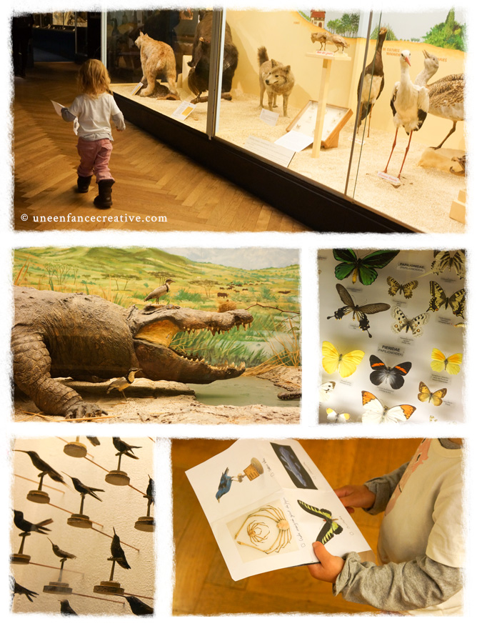 Musée Zoologique Strasbourg enfants