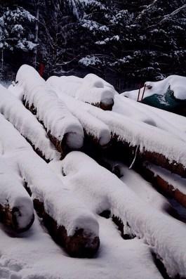 Le Hohwald sous la neige - Photo Céline Schnell Une Fille En Alsace
