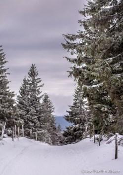 lac_blanc-38
