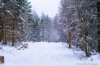 lac_blanc-7