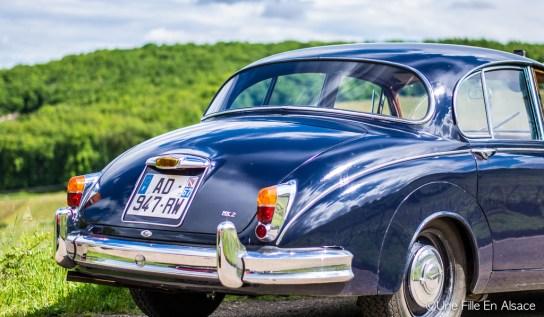 Vieille Jaguar pour AutoRetroVino