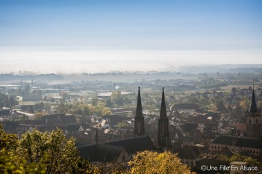 Vue sur Obernai au Coeur d'Alsace