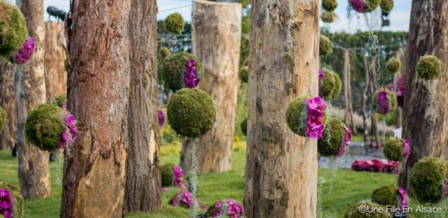 Folie'Flore 2017 au Parc Expo de Mulhouse