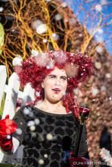 carnaval en centre alsace -Hilsenheim - Photos Céline Schnell Une Fille En Alsace