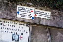 Circuit Randonnée à Dambach la Ville - Photo Céline SCHNELL Une Fille En Alsace