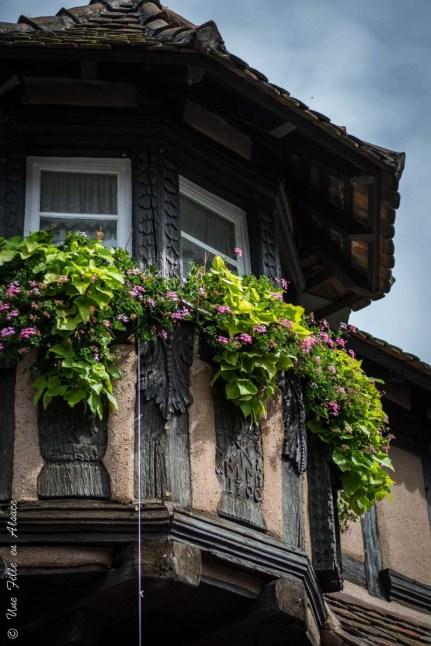 Scherwiller - Photo Céline Schnell Une Fille En Alsace